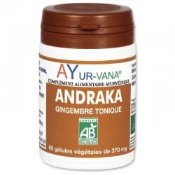 ANDRAKA AYURVANA