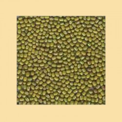 MOONG DALL ENTIER (whole) 1KG