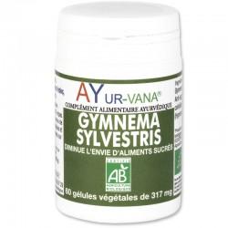 GYMNEMA SYLVESTRIS AYURVANA 60 GEL.