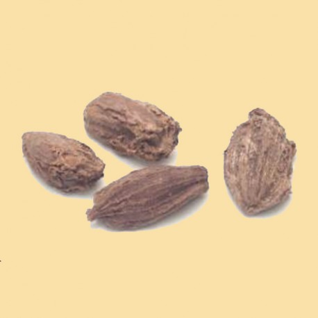 CARDAMOME NOIRE 50G